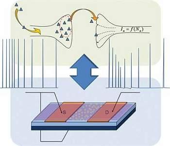 Transístor orgânico imita sinapses e abre caminho para neurocomputadores