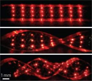 LEDs implantáveis criam tatuagens que acendem