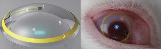 Lente de contato biônica simula projeção holográfica. Os cientistas estão  testando ... 2466080e03