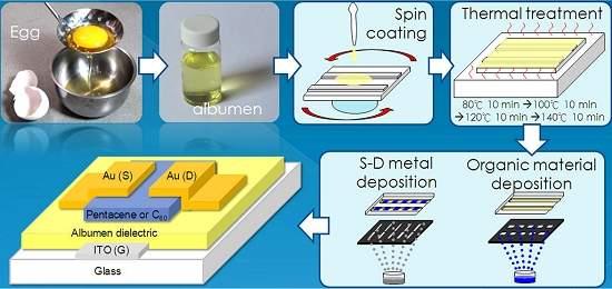 Transístor bioeletrônico é fabricado com clara de ovo