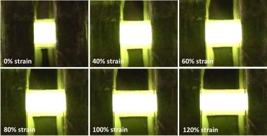 OLEDs de esticar - LEDs orgânicos flexíveis