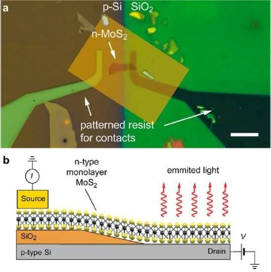 Molibdenita funciona como célula solar ou como LED