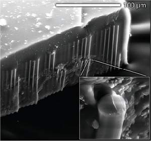 Dois recordes mundiais e duas novas células solares