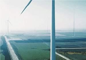 Energia eólica ganha impulso e reforça matriz renovável  brasileira