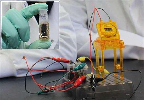 Bateria de açúcar deixa aparelhos cheios de energia