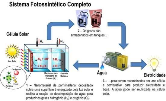 Mais um passo rumo à fotossíntese artificial