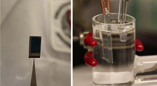 Folha biônica usa energia solar para fazer combustível líquido