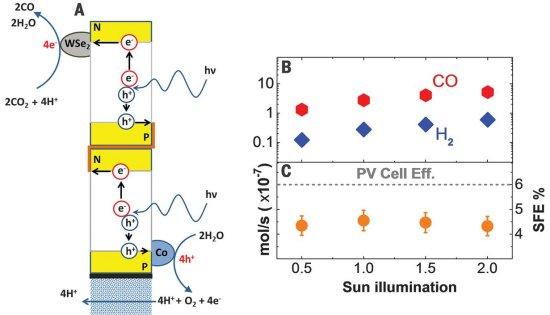 Célula biossintética transforma CO2 e luz solar em combustível