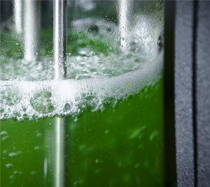 Fotossíntese turbinada