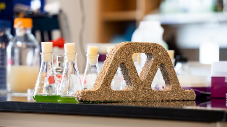 Bactérias e areia fazem tijolos vivos - que se reproduzem