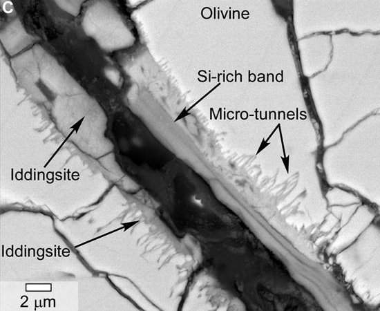 NASA anuncia descoberta de sinais de vida em meteorito de Marte