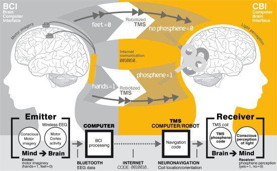 Comunicação binária cérebro a cérebro feita pela internet