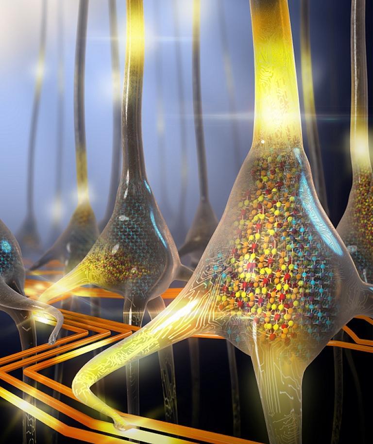 Processador inspirado no cérebro faz inteligência artificial 200 vezes mais rápido