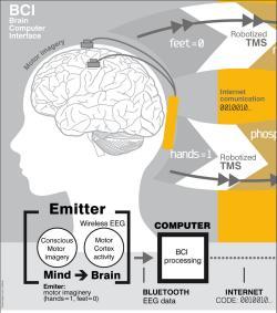 [Imagem: 010150190506-comunicacao-cerebro-cerebro.jpg]