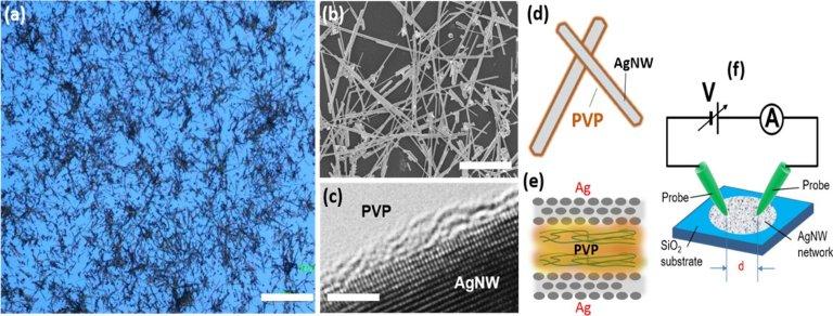 Funções cerebrais emergem em uma rede de nanofios