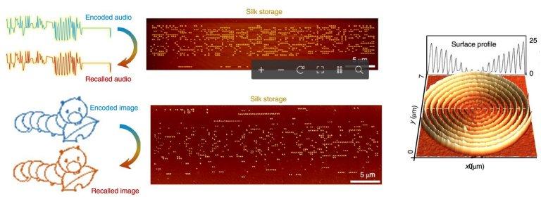 HD de seda armazena dados com altíssima densidade