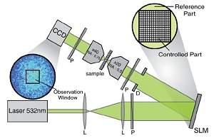 Físicos descobrem como enxergar através de materiais opacos