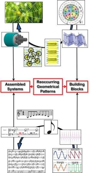 Matemática revela conexão entre a música e uma teia de aranha
