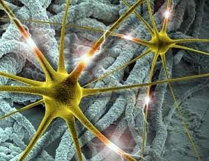 Eletrodos plásticos tornam chips neurais compatíveis com cérebro