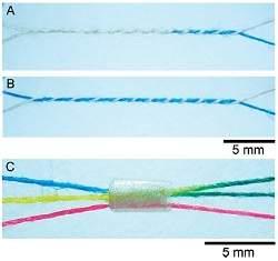 Biochip de pano é feito com agulha e linha de costura