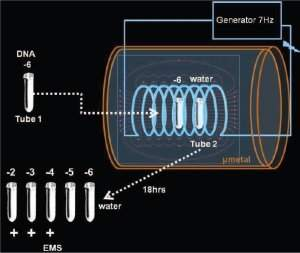 Cientista afirma ter feito teletransporte de DNA