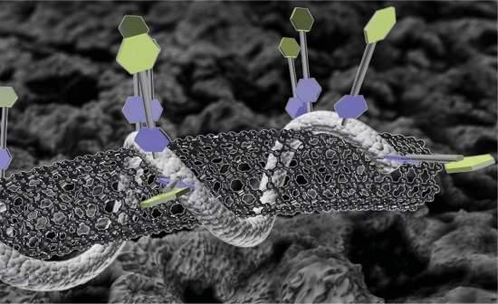 Nanotecnologia une nanotubos e DNA em biossensores de precisão
