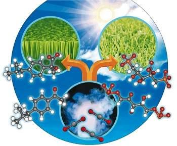Medicamentos são produzidos com energia solar e CO2