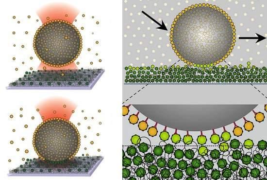 Nanovelcro funciona como correia transportadora para moléculas