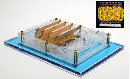 Motor e gerador funcionam com evaporação da água