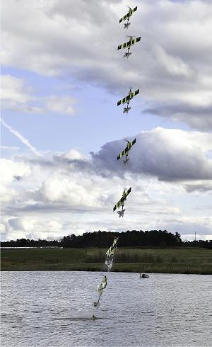 Híbrido de avião e submarino voa como águia ou como raia