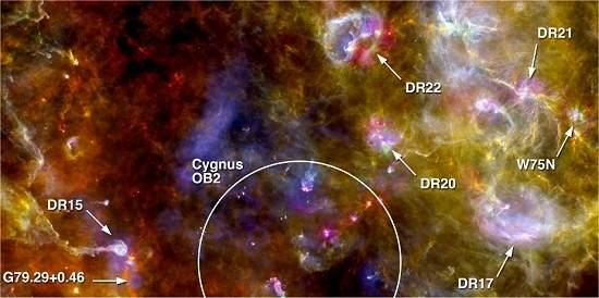 Herschel mostra ninho de estrelas do Cisne