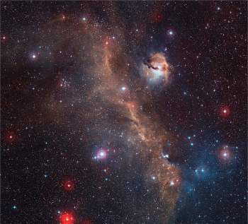 Nebulosa da Gaivota mostra as cores vivas de uma maternidade estelar