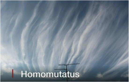 Atualizado depois de 30 anos, atlas de nuvens tem acesso aberto