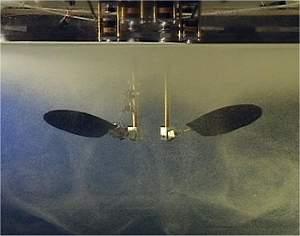 Microrrobôs voadores terão asa de inseto e giro de helicóptero