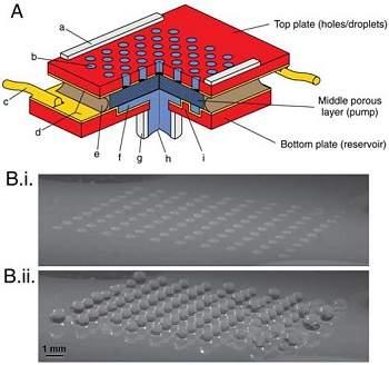Aparelho adesivo poderá permitir que humanos andem pelas paredes