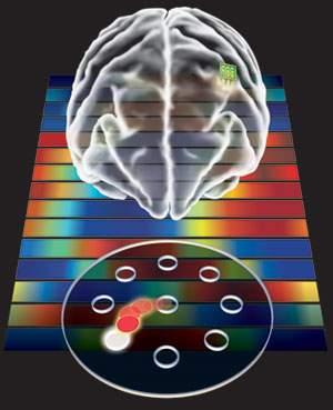 Rumo aos ciborgues: componente eletrônico feito com sangue humano