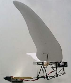 Microavião bate asas, plana e até paira no ar