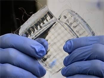 Pele artificial super flexível e transparente