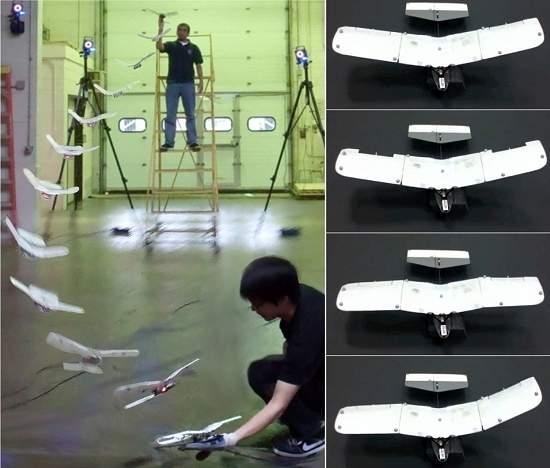 Robô misto de avião e pássaro pousa na mão