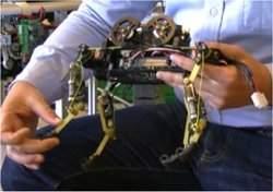 Robô biomecânico corre como um gato