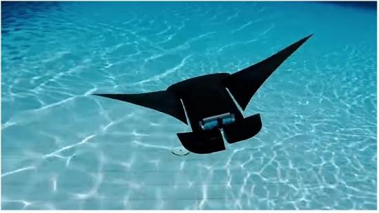 Manta-Droide voa pelas águas durante 10 horas