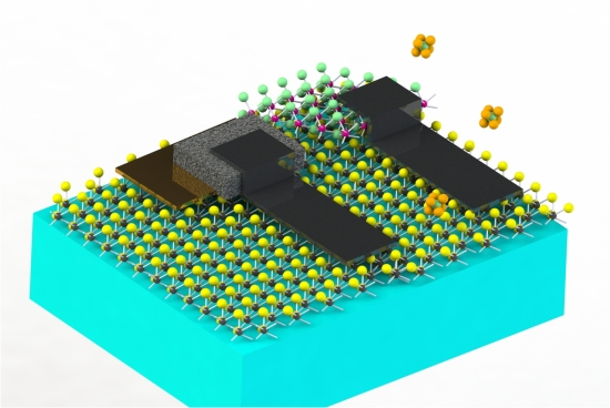 Micropartículas robotizadas monitoram ambiente e seu estômago