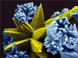 Ciência e arte: veja as belezas reveladas pela nanotecnologia