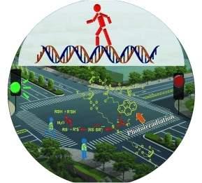 Nanorrobôs de DNA dão primeiros passos rumo à luz