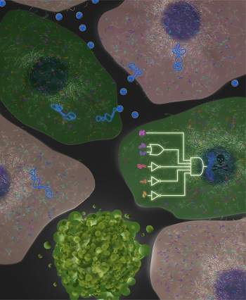Computador biológico destrói células de câncer