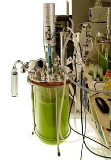 Biologia sintética promete sistemas artificiais inspirados na  natureza